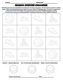 Seagull-Exercise-Challenge---Google-Docs