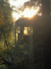 cabin sunlight IMG_4738b.jpg