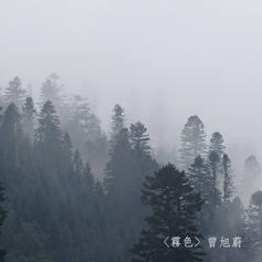 天色被灰白色的霧掩藏,世界一下子裝上了單色濾鏡,猶如以前的黑白默片。