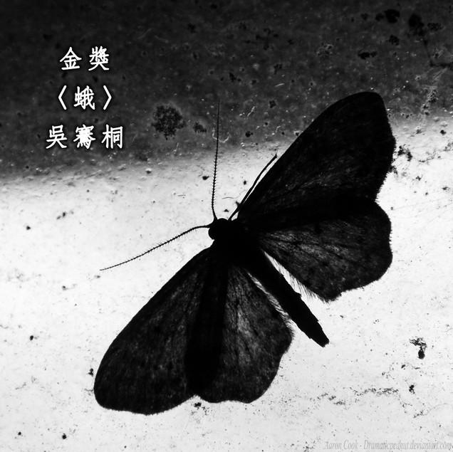 人其實跟飛蛾灑落同樣的鱗粉,飄過一個又一個難以明白的夢。他者的夢。