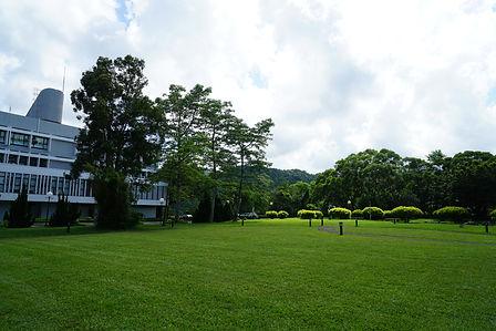 大學城與草地.JPG