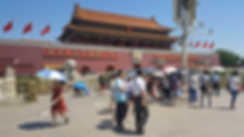 The Palace Museum.png
