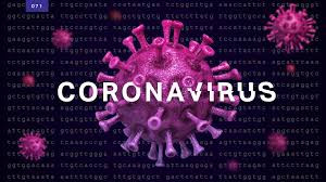 Corona-virus | Wuhan Virus | IRS Tax Debt | Flat Fee Tax Service | San Diego | California