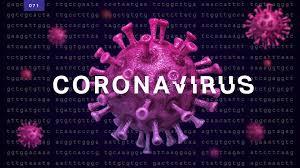 Corona-Virus | Wuhan Virus | IRS Tax Debt | Flat Fee Tax Relief | Florida | United States