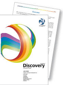 Insights Discovery Interview Chapter