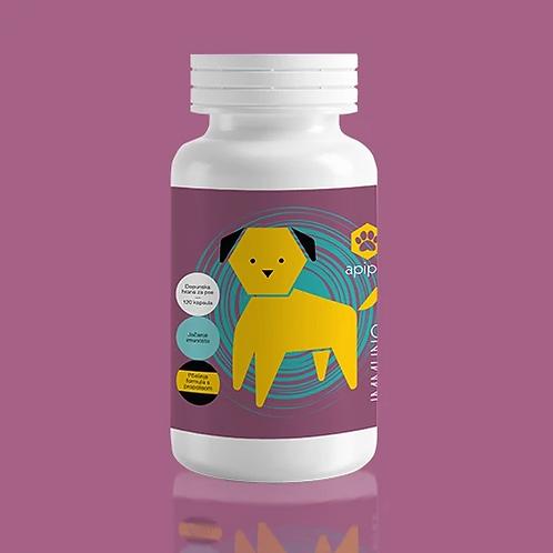Apipet IMMUNO prirodni preparat za pse