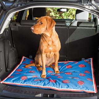 Vodootporni i hipoalergeni kreveti za pse