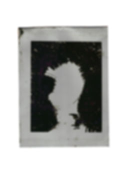 P8 toto plaque alu.jpg