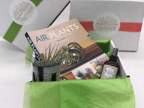 Ultimate Airplant Gift Box