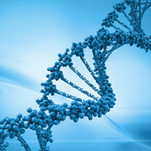 DNA Doesn't Automatically Make You A Dad
