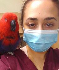 Rebecca Willdigg Long Island Exotic Pet Veterinary Assistant
