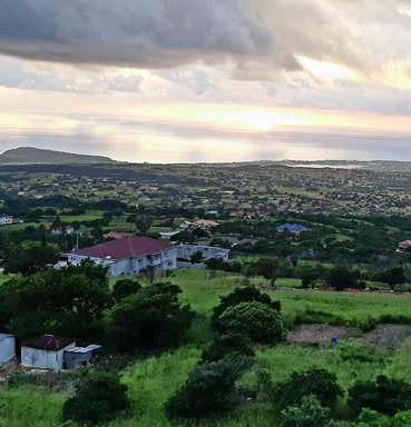 Hill view Jamaica.jpg