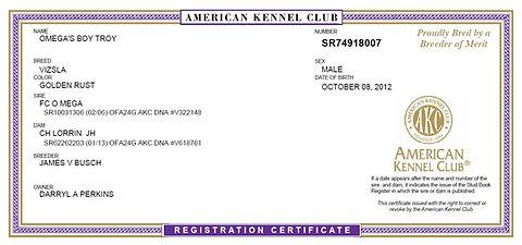 AKC Registration Papers | Perkins VDogs - Vizsla