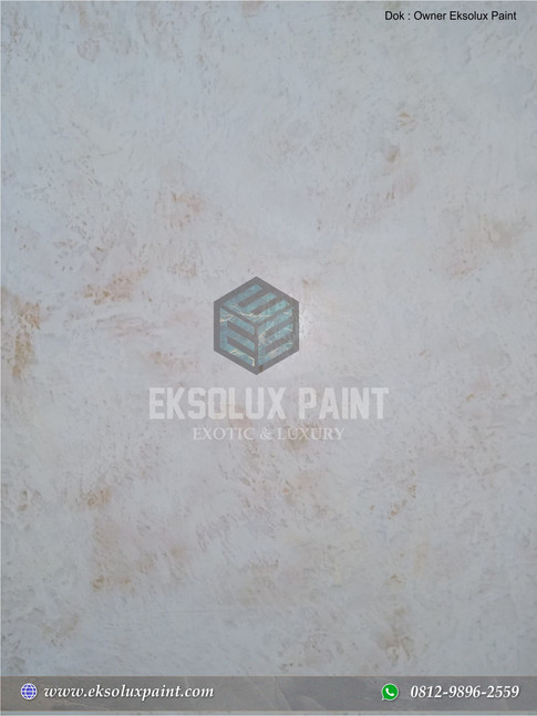 stucco venetian eksolux paint 10.jpg