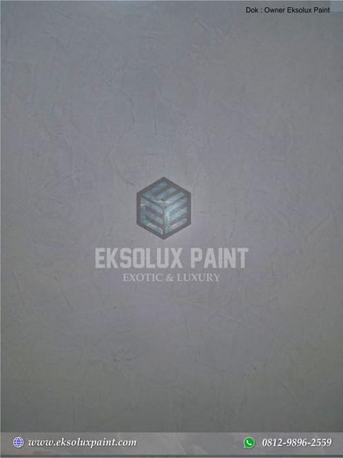 stucco venetian eksolux paint 9.jpg