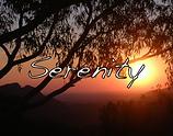 Screen Shot 2020-12-29 at 6.38.16 pm.png