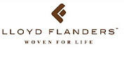 lloyd flanders.PNG