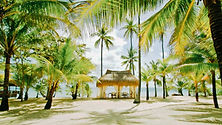 Coco Grove - Photo de Siquijor, Visayas Philippines