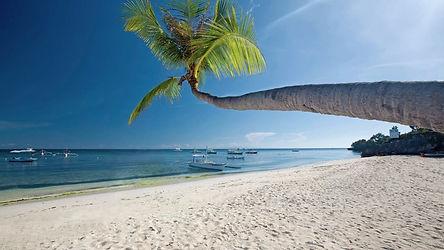 Il y a de quoi faire sur l'île de Bohol ! Entre Panglao et Alona beach