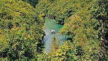 Loboc, les Visayas côté jungle-Philippines-Tropicales