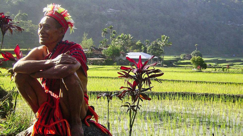 Hapao : petite randonnée dans les rizières et  rencontre avec les Ifugao