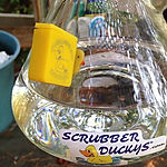 Scrubber-Duckys-Magnetic-Scrubbers_edited.jpg