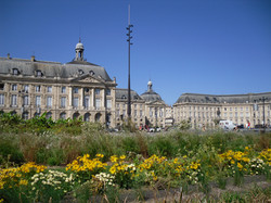 bordeaux visit learn french