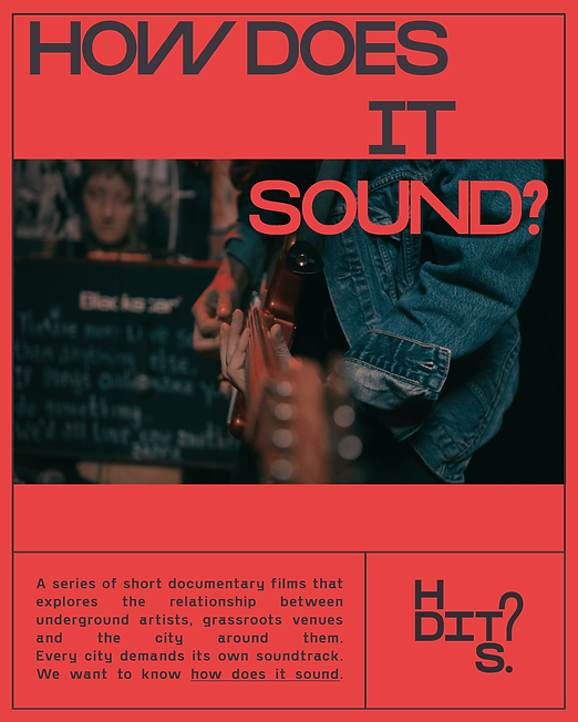 HDITS poster 3.png