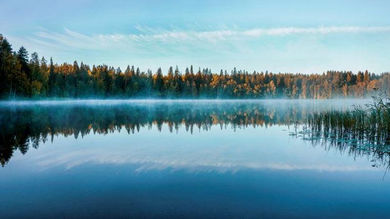 Mindfulness benefits calm lake