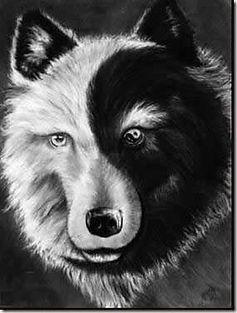 meditation story, feeding 2 wolves