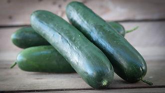2020_cucumbers_jaws.JPG