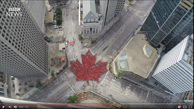 Canada Day 2017: Time-lapse captures 'largest living maple leaf'