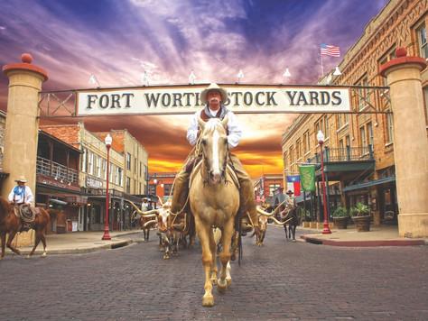 Texas: Fort Worth feiert 20 Jahre Cattle Drive