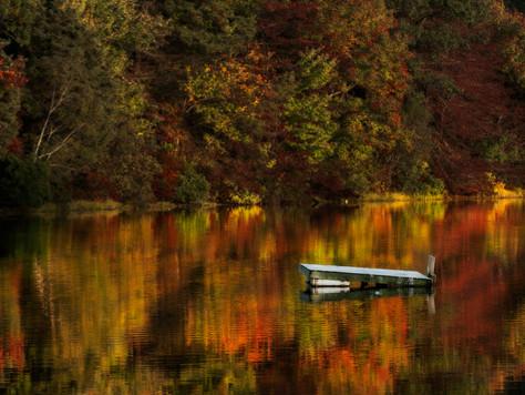 Herbst in Neuengland – und per App auf dem neuesten Stand der Laubverfärbung!