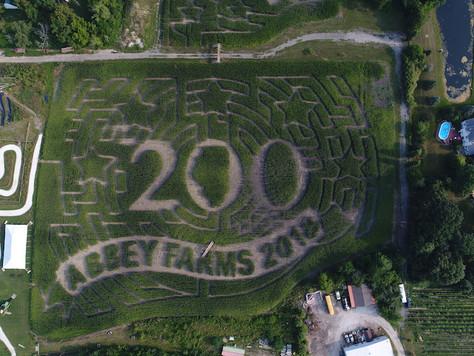 Illinois: Mais- und Apfelbaum-Labyrinthe zur 200-Jahr-Feier