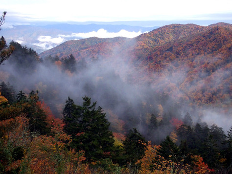 Herbst in Tennessee