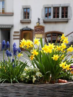 Guyere, Switzerland