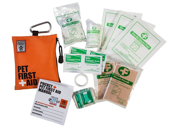 Pocket-kit-contents-only-768x587.jpg