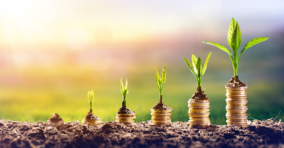 Growing Money - Plant On Coins - Finance