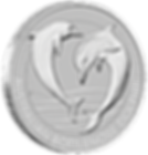 2019 Platinum Bottlenose Dolphin