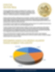 Oxford Gold Group_Page_07.jpg
