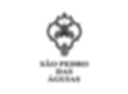 sao_pedro_das_aguias_produtores_de_vinho_douro_casa_oliveira_import