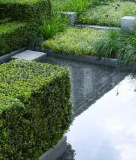 Auderset Fischer Design Garden 3.png