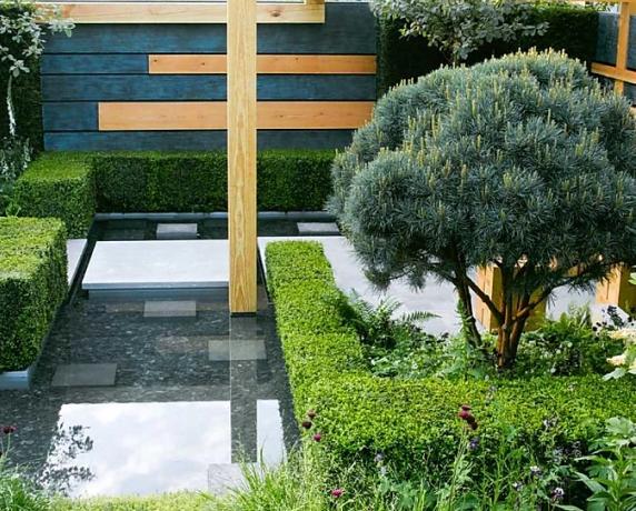 Auderset Fischer Design Garden 1.png