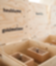 Nginious Swiss Gin Boxes.png