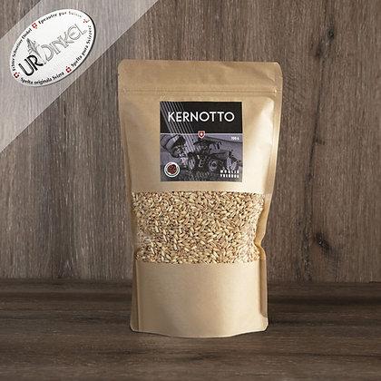 Kernotto IPS (graines d'épeautre)