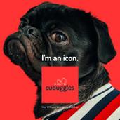 Product visual bijbehorend bij het concept logo van deze webshop voor puppy accessoires.