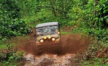 m_jeep_1.jpg.webp