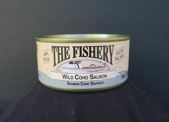 Plain Coho Salmon