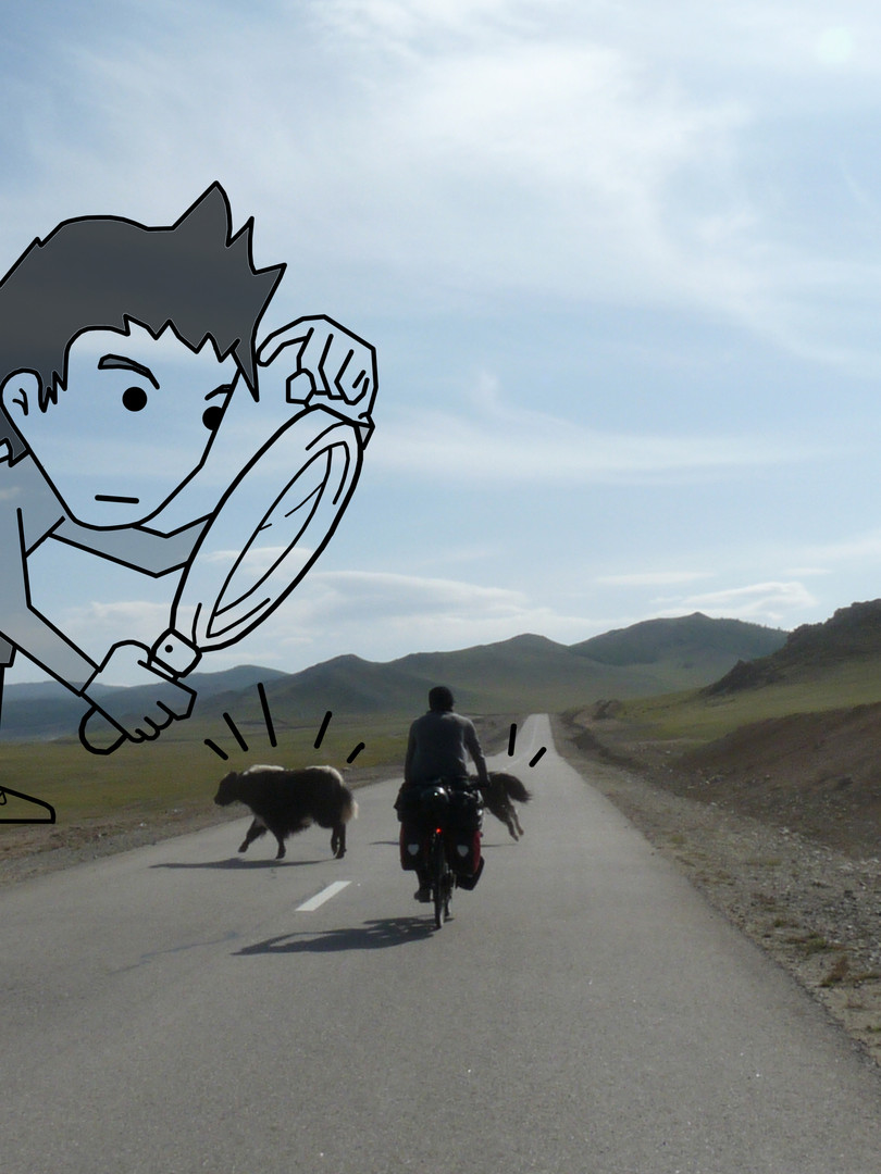 Sherlock Mongolia